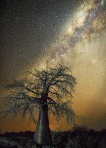 Astrologie : lien entre ciel et terre